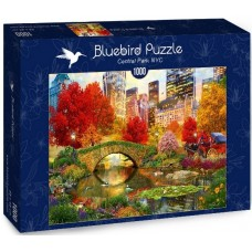 Bluebird 1000 - Central Park, New York