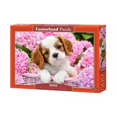 Castorland 500 - Puppy in pink flowers