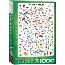 Eurographics 1000 - Evolution, The Tree of Life