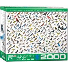 Eurographics 2000 - The World of Birds, David Sylves