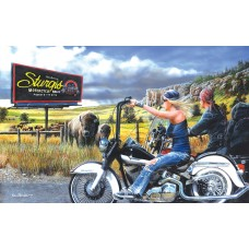 SunsOut  550  -  Journey to Sturgis, Kevin Daniel