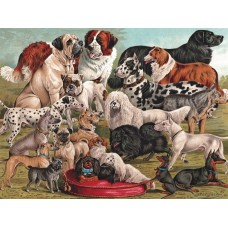 New York Puzzle  1000  - Dog breeds