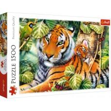 Trefl 1500 - Two tigers, Howard Robinson