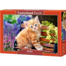 Castorland 500 - Red kitten