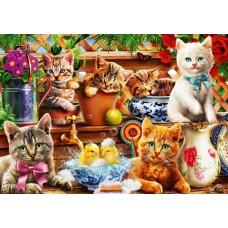 Bluebird 1000 -  Cats in pots, Adrian Chesterman