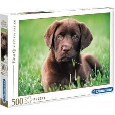 Clementoni 500 - Chocolate Labrador puppy