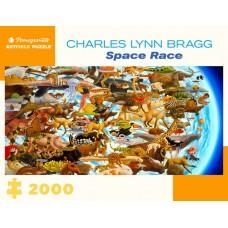 Pomegranate 2000 - Space Race, Charles Lynn Bragg