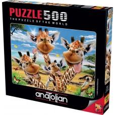 Anatolian 500 - Selfies with giraffes